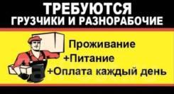 Грузчик. ИП Королев Е.В. Владивосток,Хабаровск