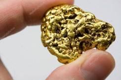 Приглашаем бизнес партнера в золотодобычу