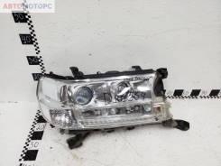 Фара передняя правая Toyota Land Cruiser 200 Restail 2 LED