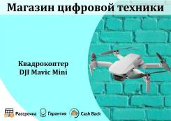 DJI Mavic Mini. С камерой
