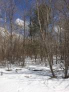 Земельный участок в деревне Лукьяновка! ИЖС Собственность. 1 500кв.м., собственность. Фото участка