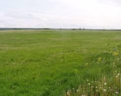 Продается земельный участок сельхоз. назначения, 3га. 30 000кв.м., собственность. Фото участка