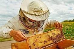 Пчеловод. Село Тыгда, магдагачинский район Амурской области