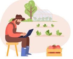 Услуги бухгалтера в садоводческом товариществе