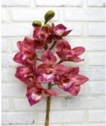 Цимбидиум (Орхидея) бордо крупный 75см