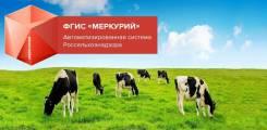 Услуги работы в ГИС Меркурий, ХАССП