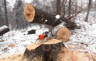 Пилка деревьев/спил деревьев/обрезка деревьев/любой сложности