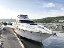 Аренда яхты. 12 человек, 55км/ч