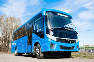 ПАЗ Вектор Next. Автобус Паз 320455-04 Вектор Некст 8,8 межгород, 30 мест, В кредит, лизинг