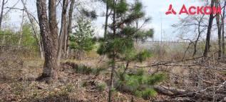 Продам большой земельный участок в Садгороде!. 2 599кв.м., собственность. Фото участка