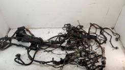 Проводка (коса) Ford America DB5Z-14A005-AMA DB5Z14A005AMA
