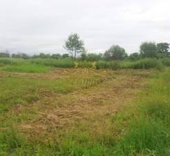9726 Предлагаем к продаже земельный участок СНТ- Шахтер-2. 1 000кв.м., собственность. Фото участка
