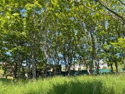 Первая линия в царском селе. 1 906кв.м., собственность. Фото участка