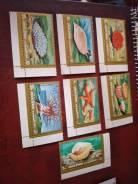 Набор марок фауна моря, чистый.