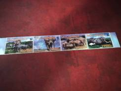 Набор марок фауна, чистый.
