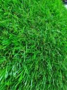 """Искусственная трава """"Осень"""" для ландшафтного дизайна. Густой, плотный ворс"""