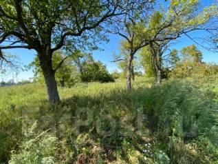 Продам земельный участок с. Кневичи. 1 800кв.м., собственность, электричество. Фото участка