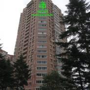 1-комнатная, улица Адмирала Горшкова 24. Снеговая падь, агентство, 37,1кв.м. Дом снаружи