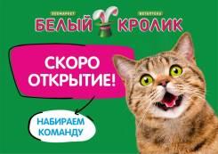 Продавец-кассир. ИП Оникиенко Р.Е. Проспект Красного Знамени 86