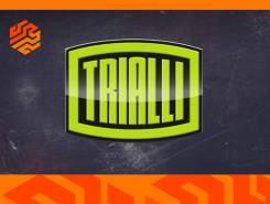 Амортизатор подвески газомасляный Trialli AG08310 правый передний AG08310